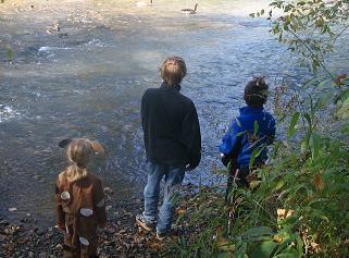 kids-and-geese.jpg